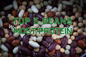 top 5 protein rich beans