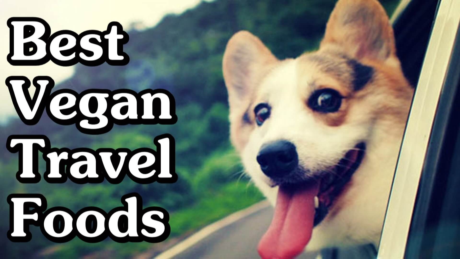 Coolest Vegan Traveling Tips