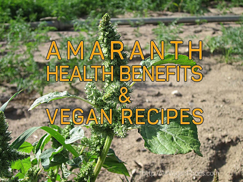 amaranth health benefits and recipes