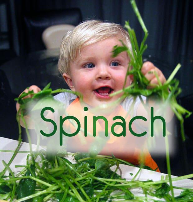 Vegan Spinach in Creamy Cashew Sauce