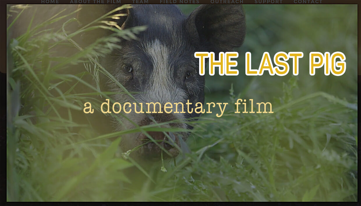 The Last Pig Documentary – in production