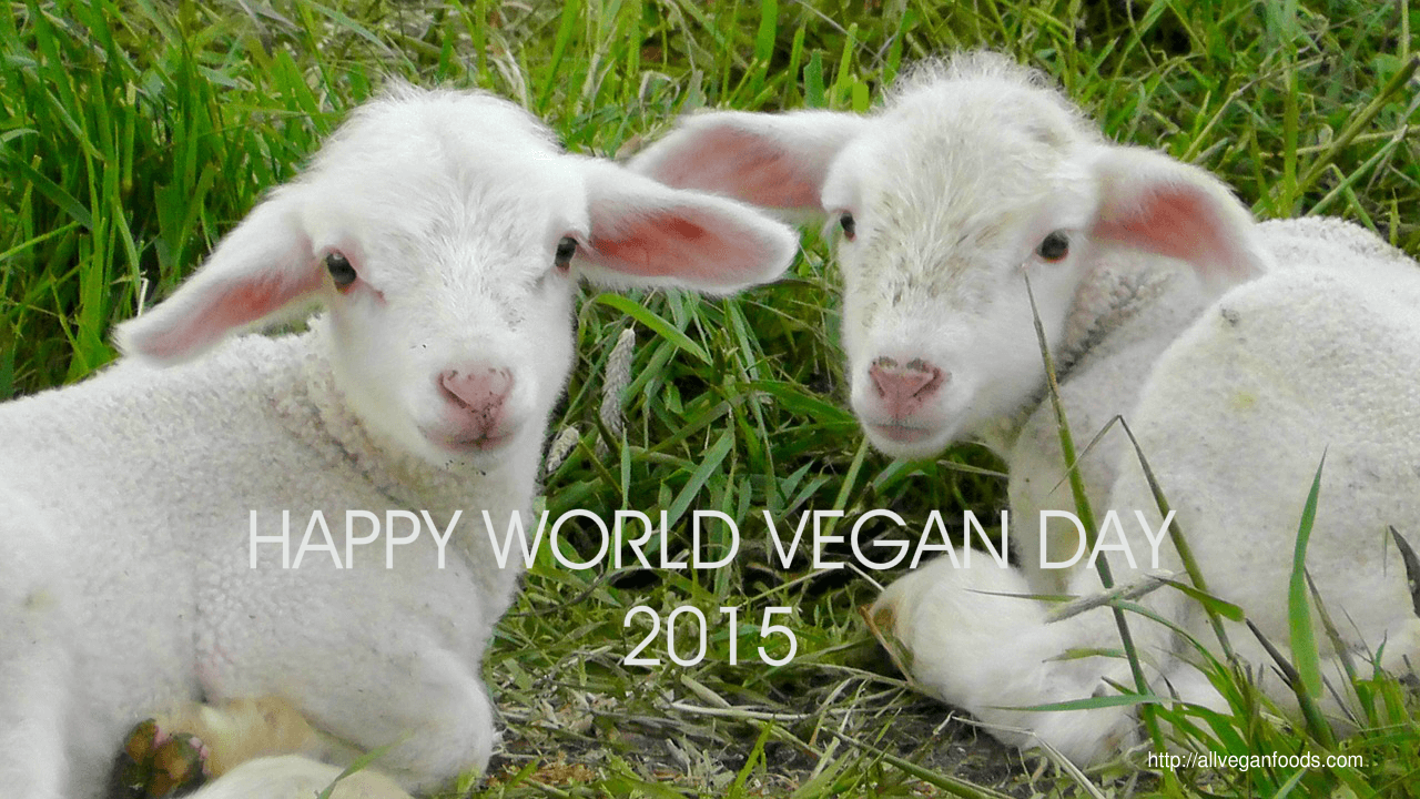 Happy World Vegan Day 1st of November